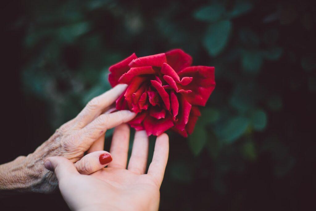 cure Palliative: Amore senza fine